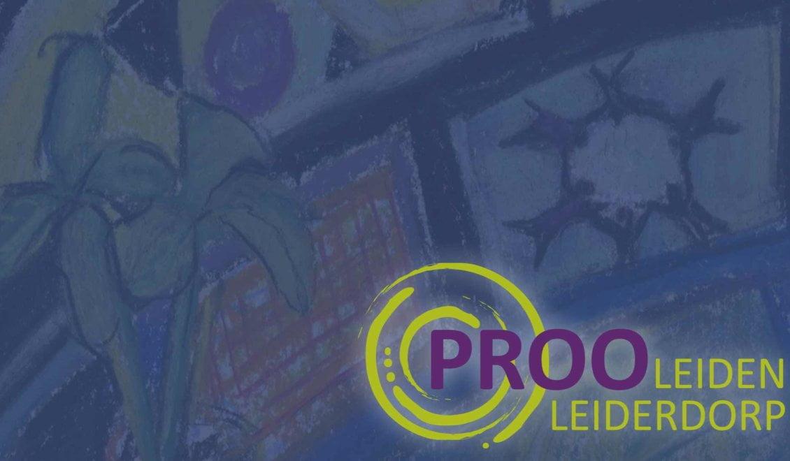 Case ProoLeiden